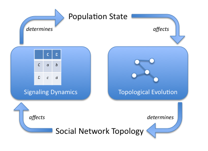 adaptive-network-model.png